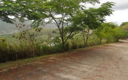 rice-hill-gardens-lot-5