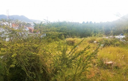commercial-investment-opportunity-carribean-land-for-sale-3