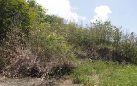 cole-bay-investment-land-for-sale-6