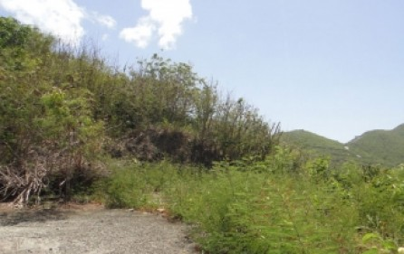 cole-bay-investment-land-for-sale-7