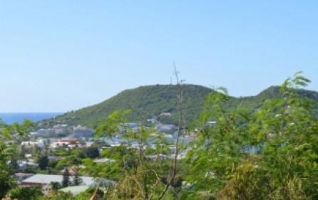 diamond-hill-legacy-estate-927-4