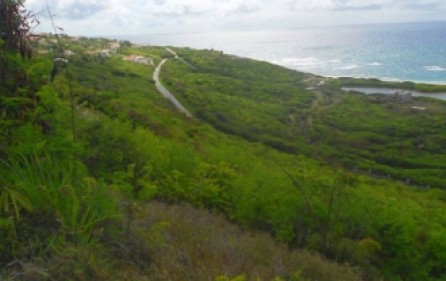 private-beauty-893-st-maarten-land-2