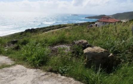 tamarind-hill-lot-land-sale-935-3