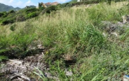 tamarind-hill-lot-land-sale-935-4