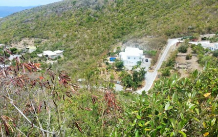 caribbean-dream-guana-bay-development-land-for-sale-1