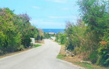 caribbean-dream-guana-bay-development-land-for-sale-2