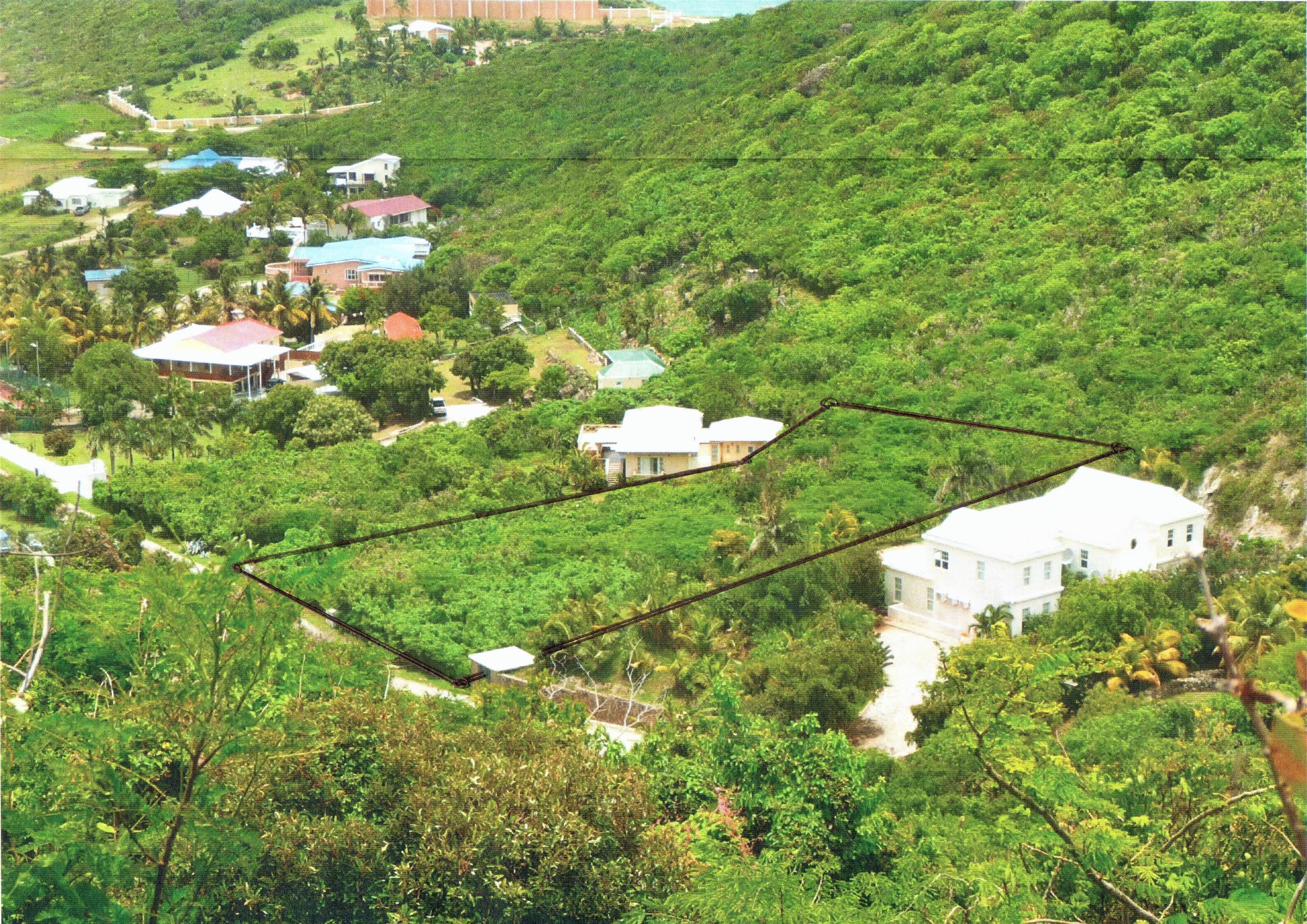 Caribbean Dream Lot