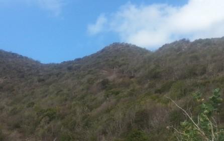 10-acre-hillside-development-land-for-sale-in-guana-bay-12