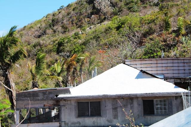 10 Acre Hillside Paradise