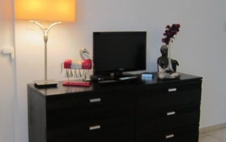 eleganzia-apartment-condo-vacation-rental-pelican-key-11