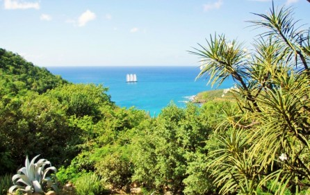 cay-hill-ocean-views-villa-for-investment-property-4