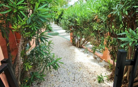 villa-for-rent-palmier-almond-grove-sxm-19