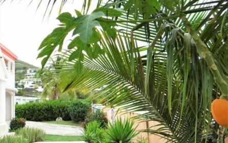 diamond-estates-villa-for-sale-in-cole-bay-sxm-26