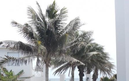 anguilla-sandy-hill-c4-condo-for-sale-2