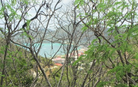 great-bay-philipsburg-land-for-sale-2