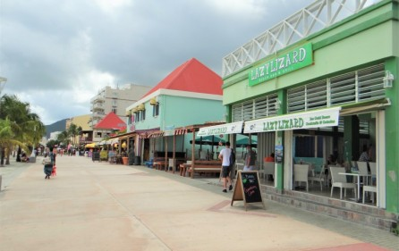 lazy lizard caribbean beach bar for sale 6