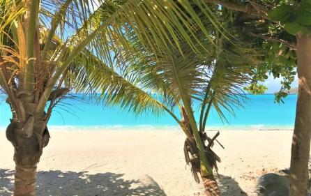 philipsburg beach dream condo for rent main
