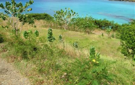 indigo bay sxm exclusive land for sale 5
