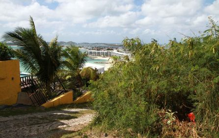 Pelican Key – Onyx Land for Sale