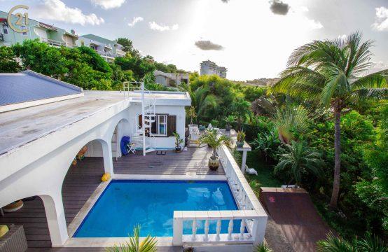 Cupecoy Villa - Private pool