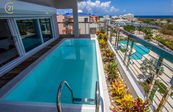 Penthouse Pool and Deck